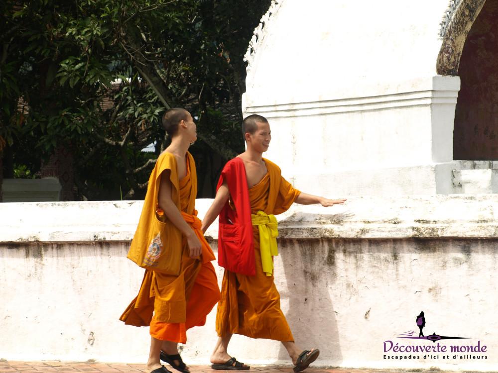 moines lp