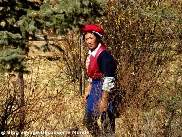 tibétain shangri-la