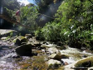 trek valle cocora