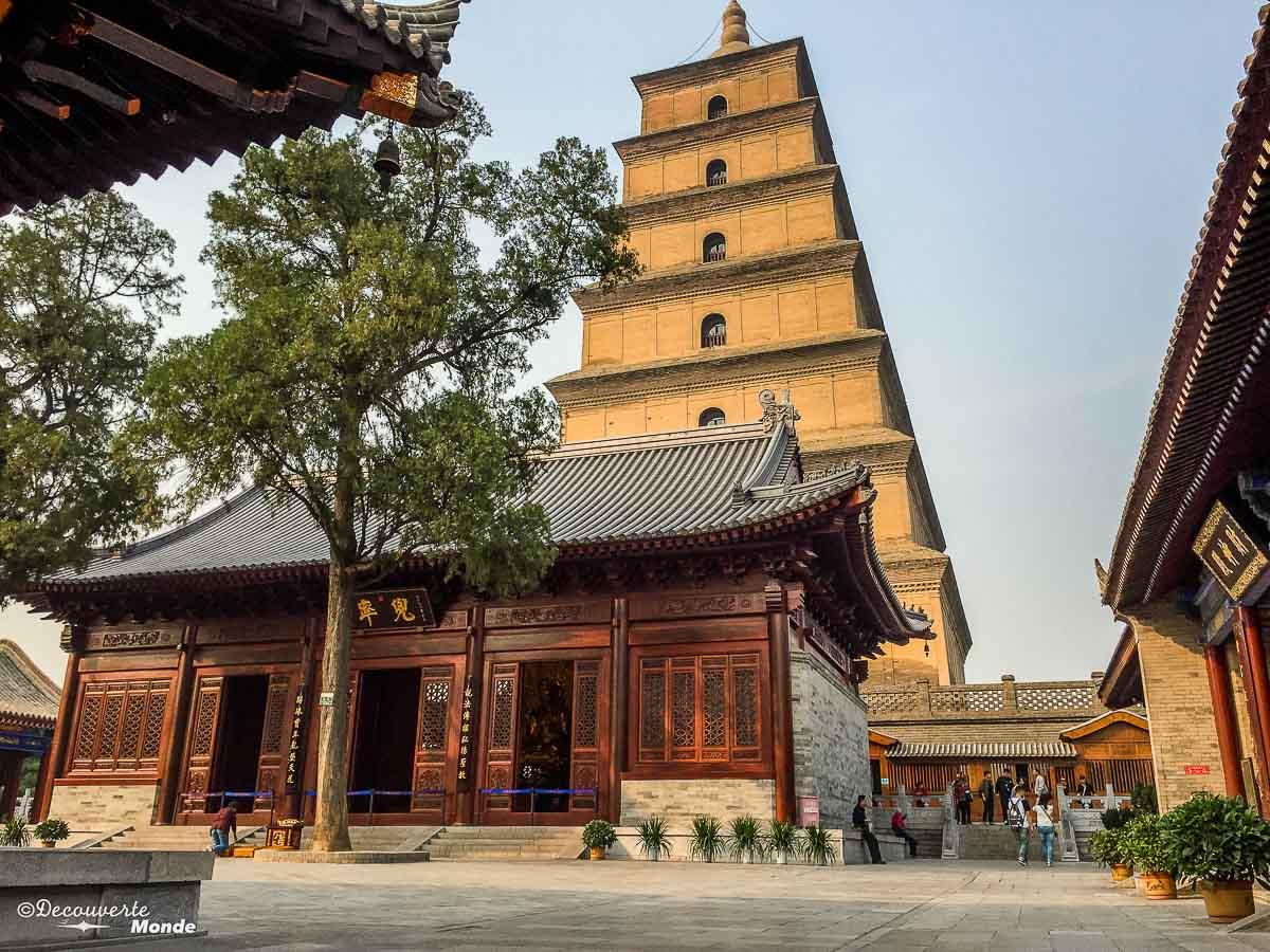 pagode oie sauvage xi'an