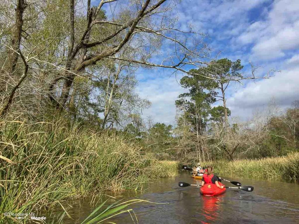 bayous visiter la Nouvelle-Orleans