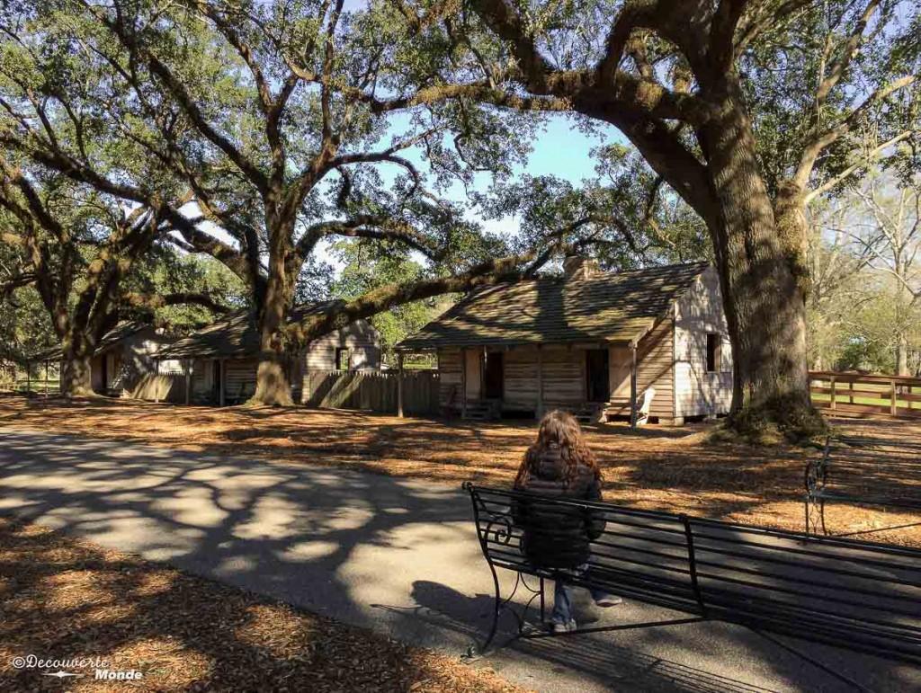 oak alley Louisiane