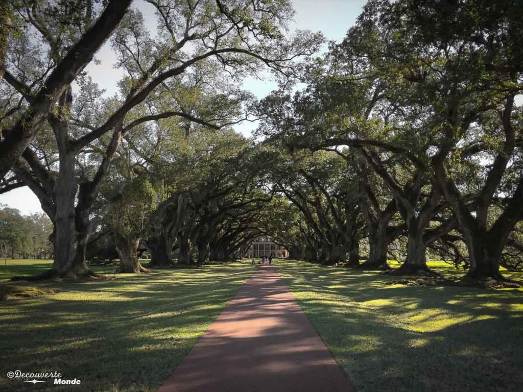 Oak Alley visiter la Nouvelle-Orleans