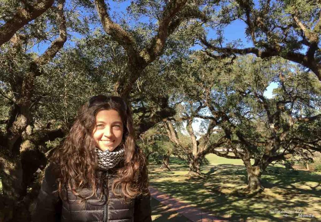 Oak Alley visiter Nouvelle-Orleans