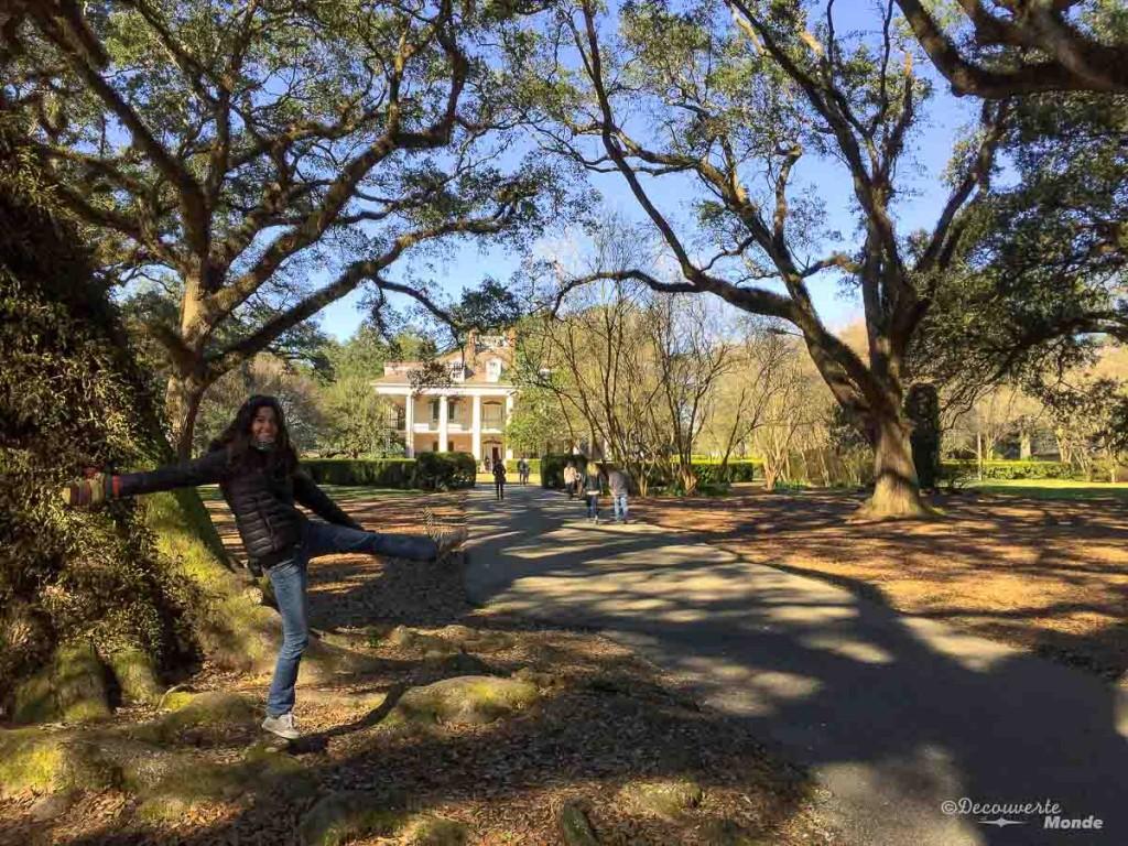 plantation Oak Alley