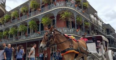 visiter la Nouvelle-Orleans