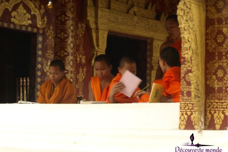 moines bouddhistes études