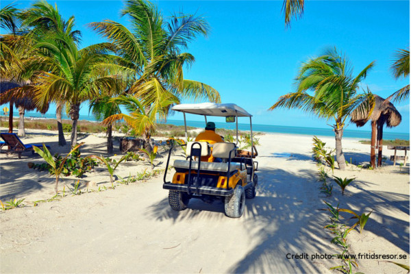 holbox plage mexique