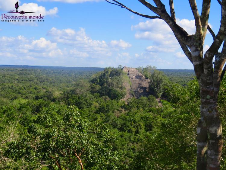 ruines mayas calakmul