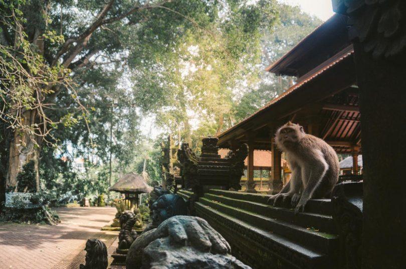 Carte Bali Chose A Voir.Que Faire A Bali Et Visiter En 8 Coups De Coeur