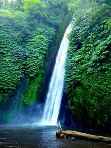 Quoi Faire Bali Visiter Munduk