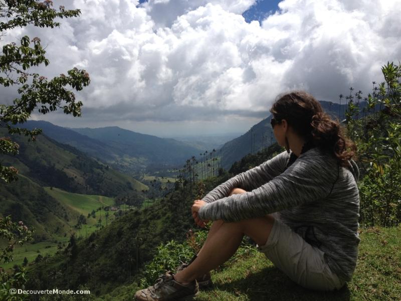 vallée de cocora colombie