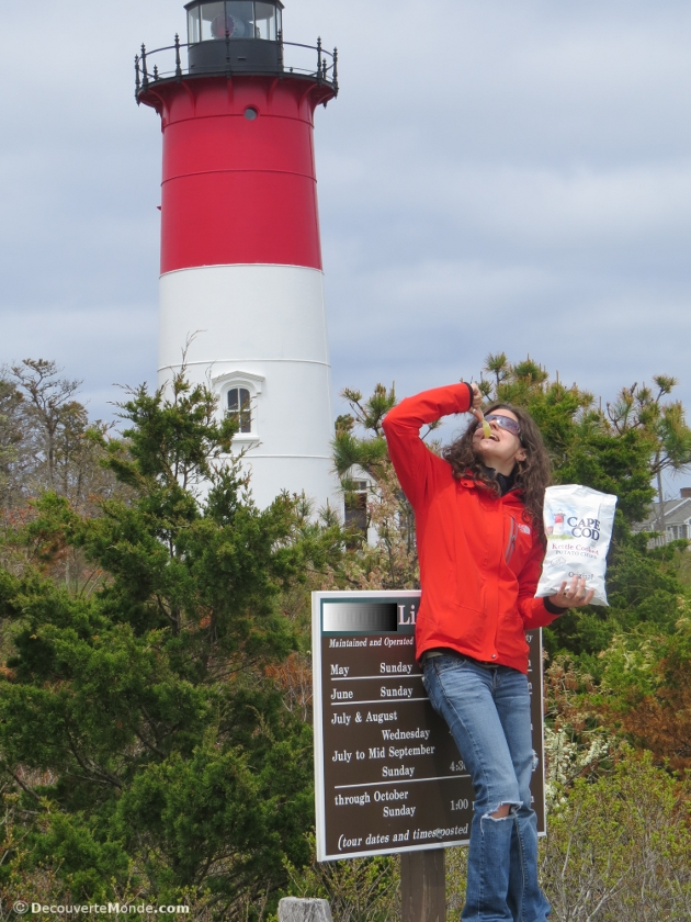phare chips cape cod