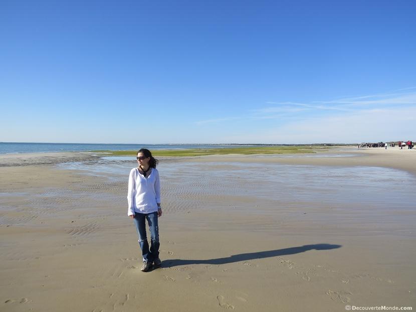 visiter cape cod plage