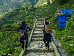 hmong noir sapa