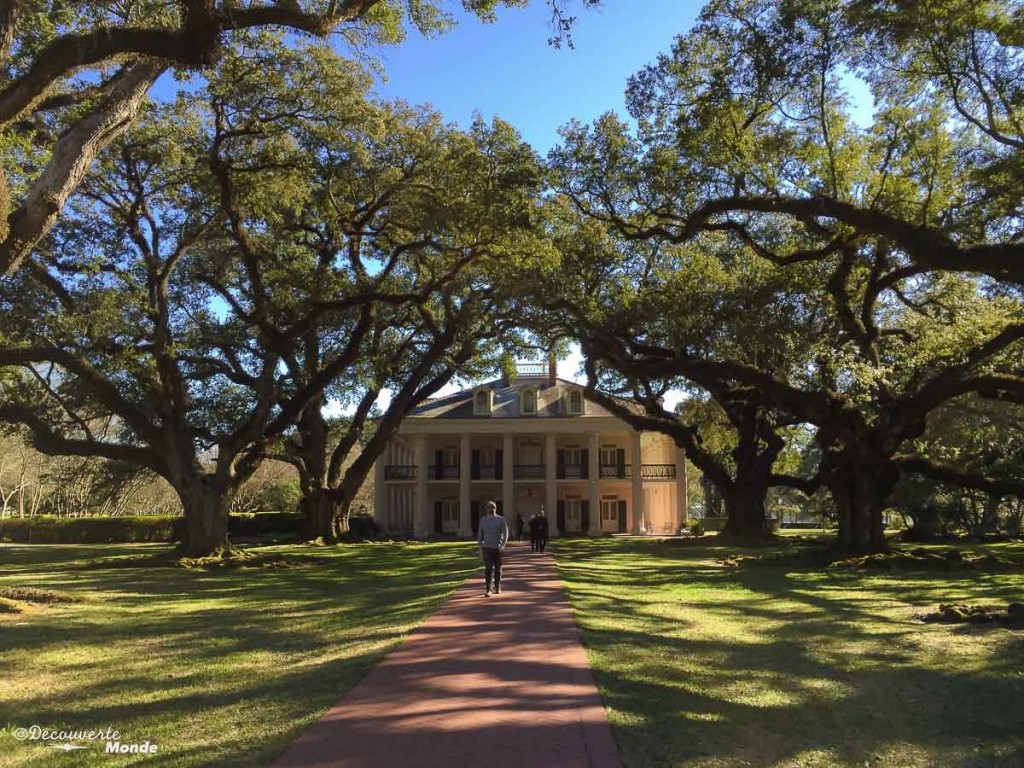 Oak Alley plantation Louisiane