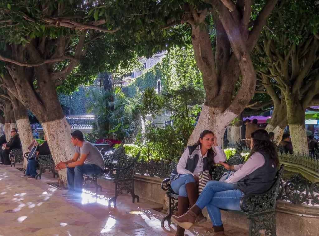 parc central guanajuato