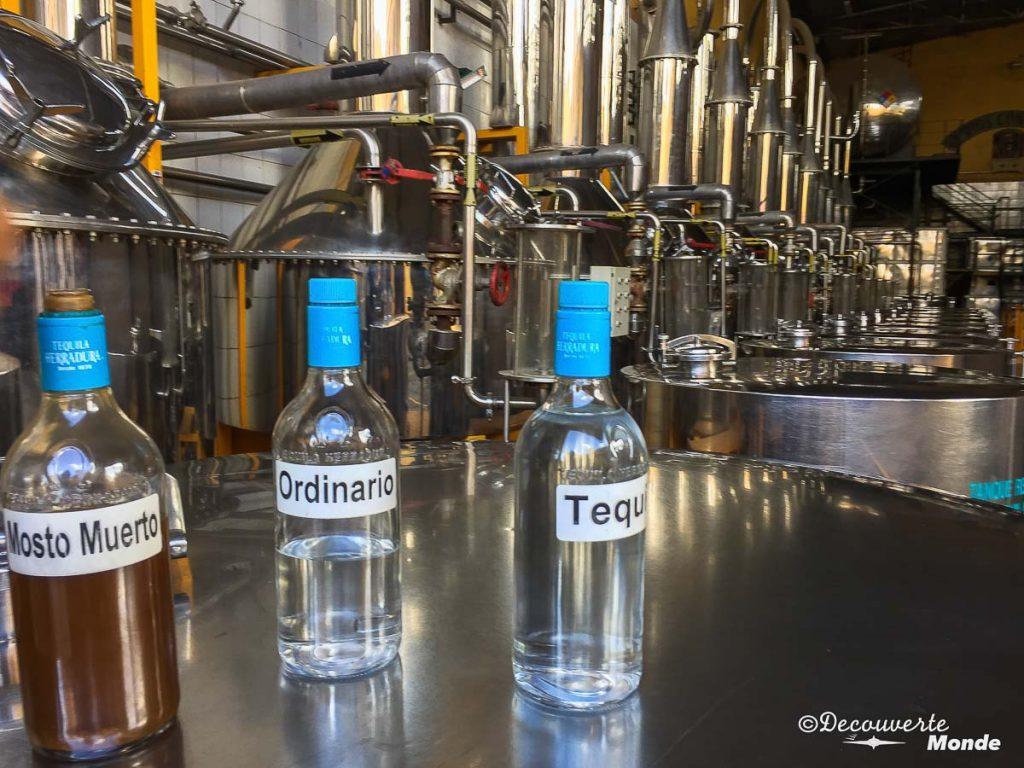 distillation tequila tour mexique