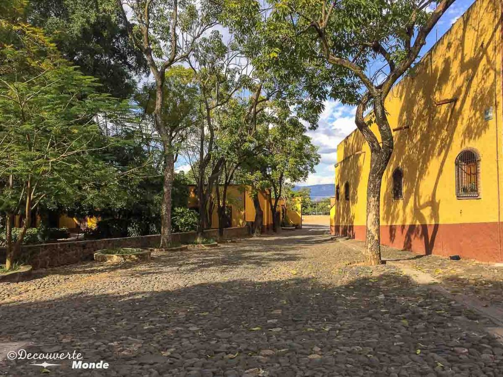 hacienda tequila tour mexique