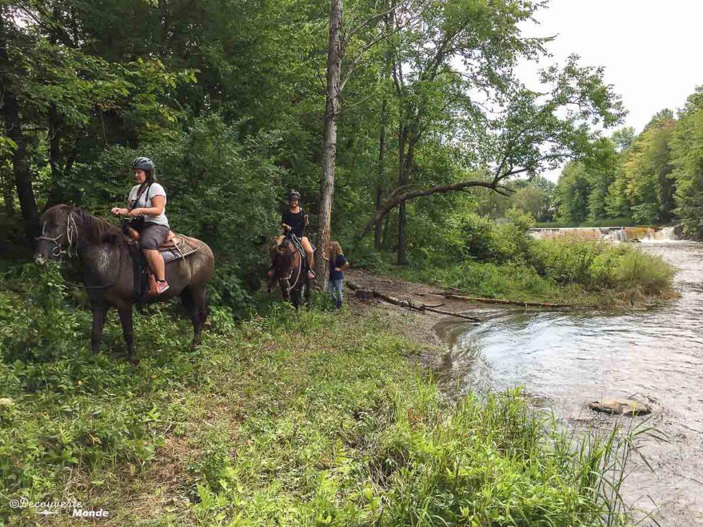 équitation M Ta Région