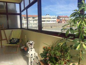 Où aller au Portugal : Mon itinéraire pour visiter le Portugal en 7 jours. Ici dans un Airbnb à Porto. Retrouvez l'article ici: https://www.decouvertemonde.com/ou-aller-au-portugal-itineraire-visiter-7jours