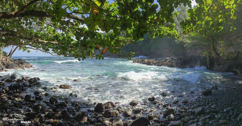 Big Island : Mon voyage de 10 jours sur la plus grande des îles d'Hawaii. Ici la baie Onomea. Retrouvez l'article ici: https://www.decouvertemonde.com/big-island-voyage-iles-hawaii