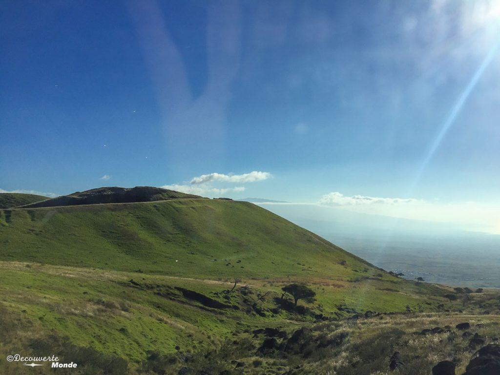Big Island : Mon voyage de 10 jours sur la plus grande des îles d'Hawaii. Ici sur la Kohala mountain road. Retrouvez l'article ici: https://www.decouvertemonde.com/big-island-voyage-iles-hawaii