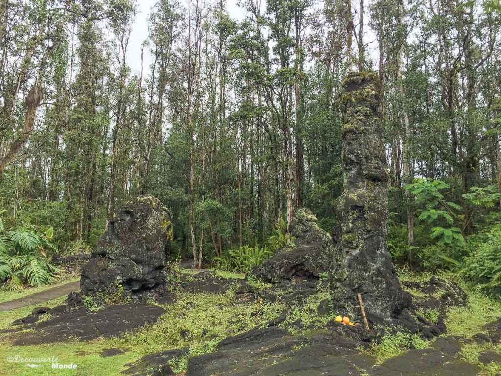 Big Island : Mon voyage de 10 jours sur la plus grande des îles d'Hawaii. Ici Lave trees state park. Retrouvez l'article ici: https://www.decouvertemonde.com/big-island-voyage-iles-hawaii