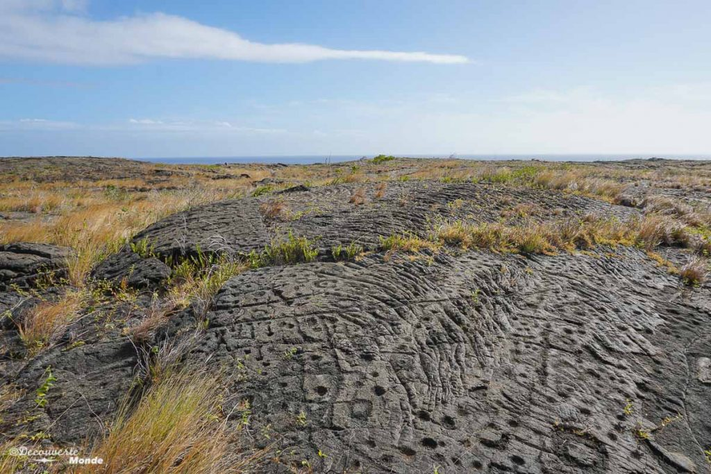 Big Island : Mon voyage de 10 jours sur la plus grande des îles d'Hawaii. Ici les pétroglyphes du parc des volcans . Retrouvez l'article ici: https://www.decouvertemonde.com/big-island-voyage-iles-hawaii