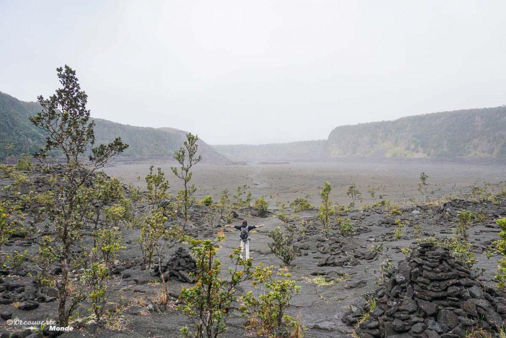 Big Island : Mon voyage de 10 jours sur la plus grande des îles d'Hawaii. Ici sur la Kilauea Iki trail dans le parc des volcans. Retrouvez l'article ici: https://www.decouvertemonde.com/big-island-voyage-iles-hawaii