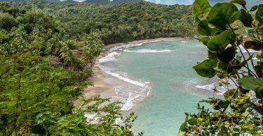 Îles des Caraïbes à visiter en 10 coups de coeur. Ici plage de la Dominique. Retrouvez l'article ici: https://www.decouvertemonde.com/iles-des-caraibes-a-visiter
