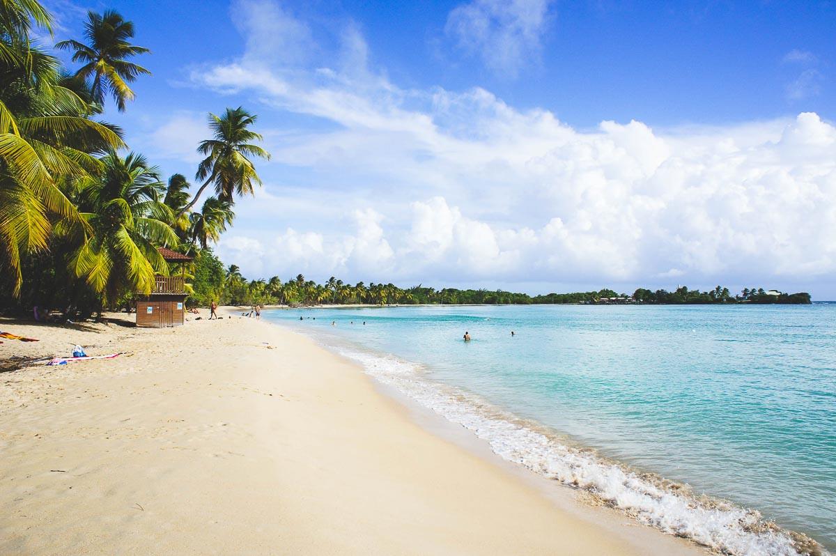 Îles des Caraïbes à visiter en 10 coups de coeur. Ici la Martinique, l'île aux fleurs. Retrouvez l'article ici: https://www.decouvertemonde.com/iles-des-caraibes-a-visiter