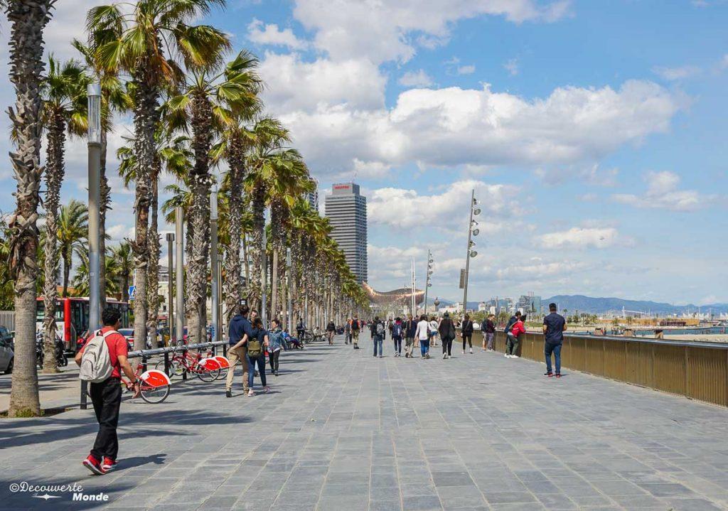 La plage Barceloneta à Barcelone. Dans mon article Visiter Barcelone en Espagne : Que faire et voir le temps d'un week-end. | Que faire à Barcelone et que voir | Quoi voir à Barcelone et quoi faire | Que visiter à Barcelone | Activités à Barcelone | Où dormir à Barcelone| #barcelone #barcelona #europe #espagne #catalogne #citytrip #voyage #barceloneta #plage