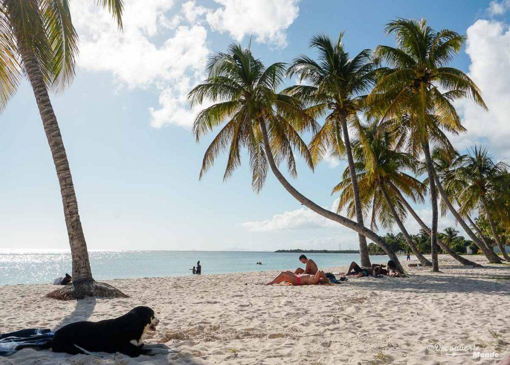 La plage du Grand-Bourg sur Marie-Galante dans mon article Que faire en Guadeloupe et visiter : Idées d'activités à petit budget #guadeloupe #antilles #caraibes #ile #voyage #mariegalante #plage #mer