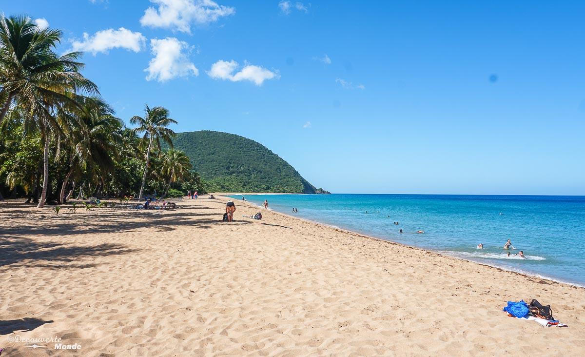 Paysage de la plage Grande-Anse sur Basse-Terre dans mon article Quoi faire en Guadeloupe : 6 paysages incontournables à voir en Guadeloupe #guadeloupe #antilles #caraibes #ile #voyage #basseterre #grandeanse #paysage #nature #plage
