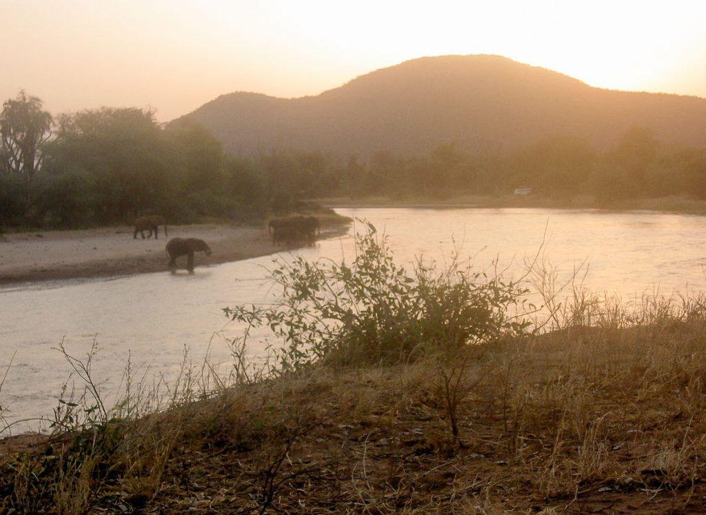 Éléphants dans la réserve Samburu dans mon article Safari au Kenya pas cher : Comment le faire en indépendant dans 5 réserves #kenya #safari #afrique #voyage #animaux #samburu
