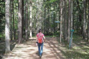 Sentier de randonnée du Domaine Saint-Bernard à Tremblant dans mon article Mon voyage au Mont-Tremblant en bus : Visiter Mont-Tremblant sans voiture #monttremblant #tremblant #laurentides #quebec #quebecoriginal #experiencebusbud #randonnee