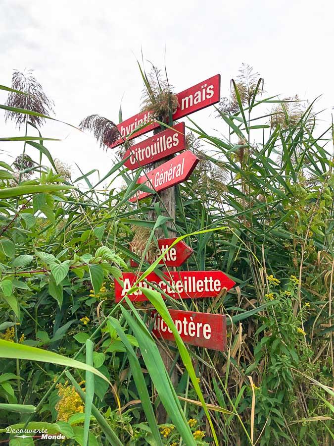 Le verger des Laurentides chez Labonté de la pomme dans mon article Sur la Route gourmande des Laurentides avec la Navette Nature #laurentides #quebec #navettenature #routegourmande #agrotourisme #verger #vignoble