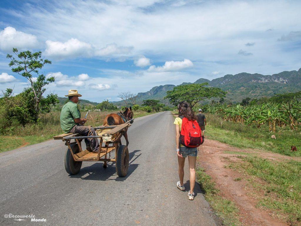Cuba rural dans la Vallée de Vinales à Cuba dans mon article Viñales à Cuba : Explorer la campagne cubaine dans la vallée de Viñales #cuba #vinales #unesco #campagne #voyage