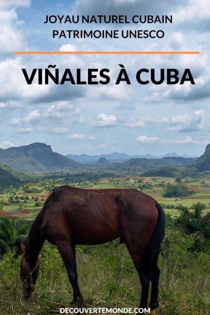 Viñales à Cuba : Explorer la campagne cubaine dans la vallée de Viñales | Viñales | Viñales à Cuba | vallée de Viñales | vallée de Viñales à Cuba | Cuba | UNESCO | patrimoine de l'humanité | voyage à Cuba | visiter Viñales | #cuba #vinales #unesco #campagne #voyage